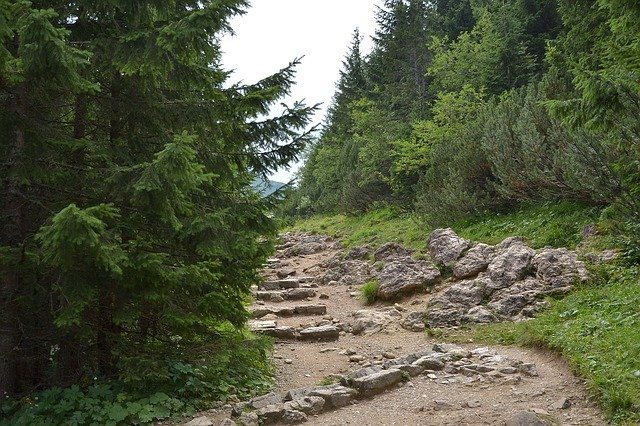 Dlaczego urlop w górach może być bardzo udany?